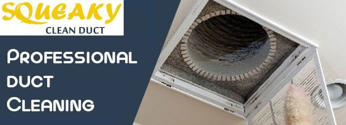 Professional Duct Cleaning Ashwood